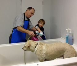 Welcome to doggie day spa columbus doggie day spa provides all the tools you need to make your dog look smell and feel great no appointment necessary for self wash solutioingenieria Images